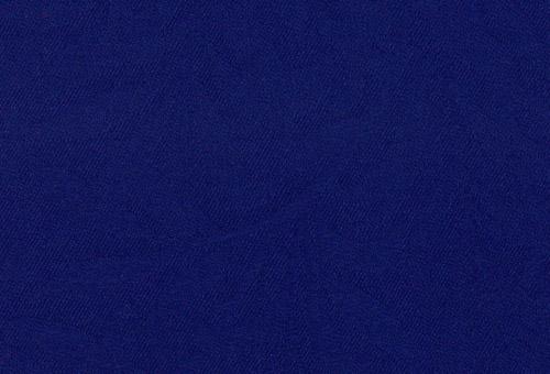 CT403 パーム ロイヤルブルーの...